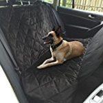 Reise & Transport für Hunde